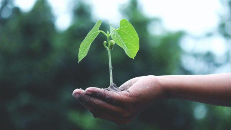 Una vida más sostenible